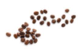 opt_shutterstock_Coffee beans.jpg