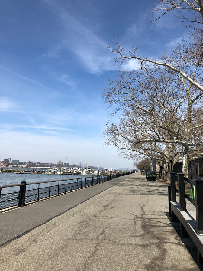 Cycling to Central Park March 28th 2019