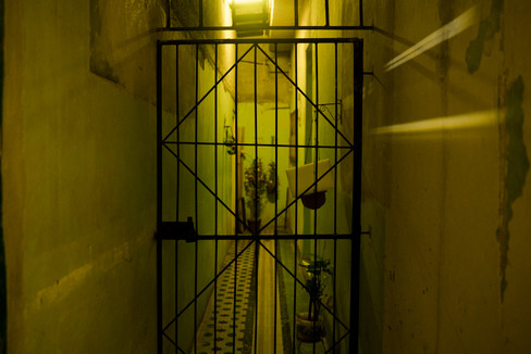 Green Cage.jpg