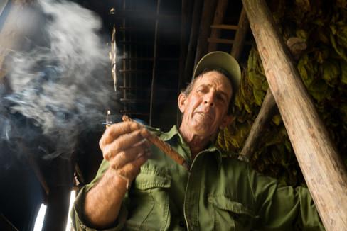 Cuban Cigar Farmer.jpg