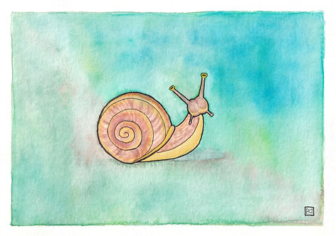 Snail's Pace Mixed Media