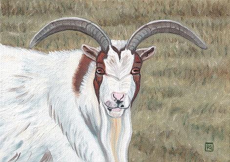 Matcha Oil Painting