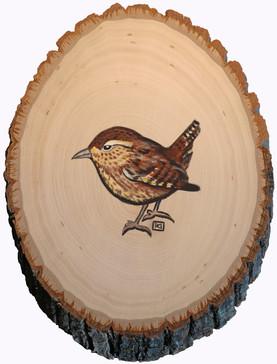 Wren on Wood