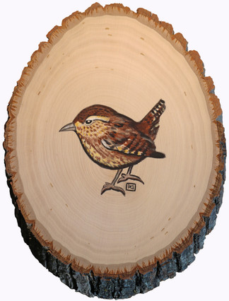 Wren on Wood