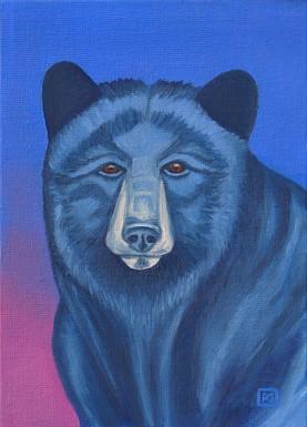 Elder Bear