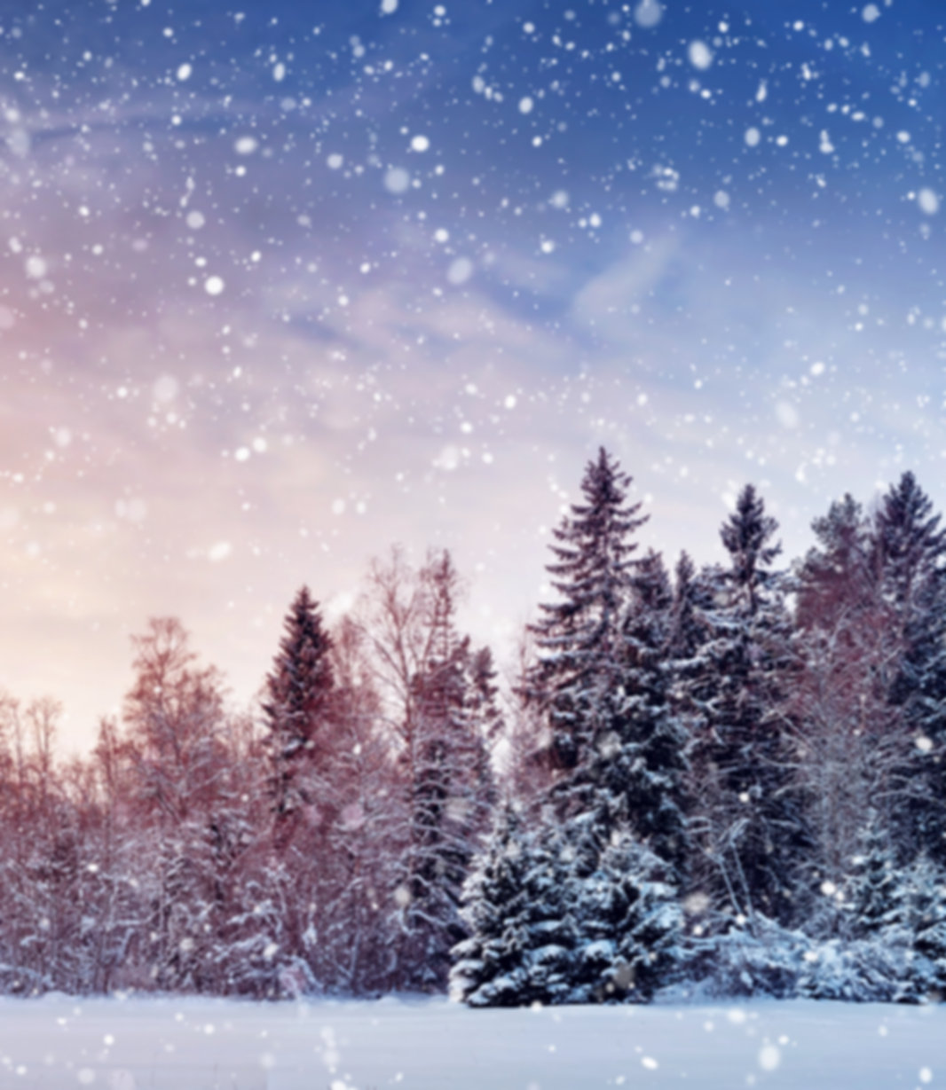 generic - snow.jpeg