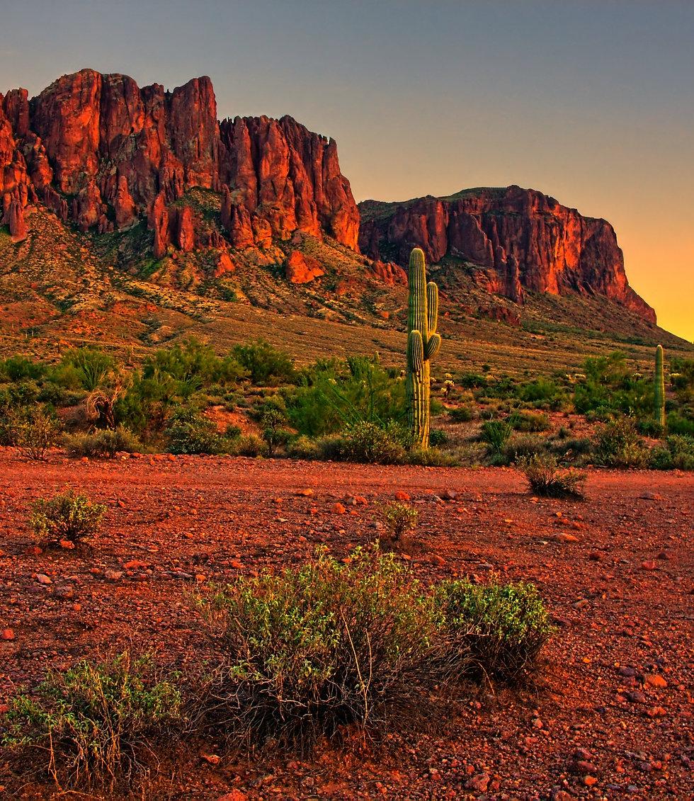 NM - Desert.jpeg