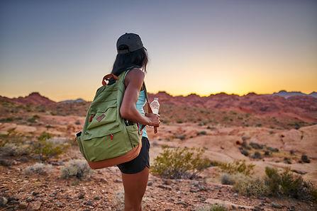 lifestyle - hiker desert.jpeg