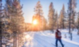 lifestyle - cross country skiing.jpeg