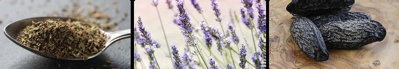 ESN French Lavender Fragrance Notes.png