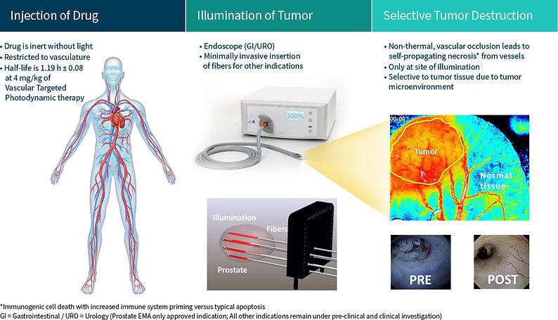 selective-cancer-treatment.jpg