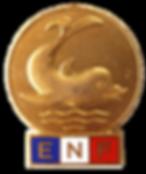 Broche_ENF_redim.png