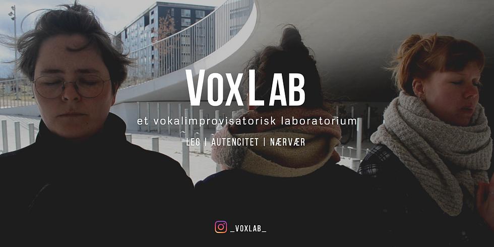 VoxLab Workshop