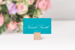 Teal Place Card