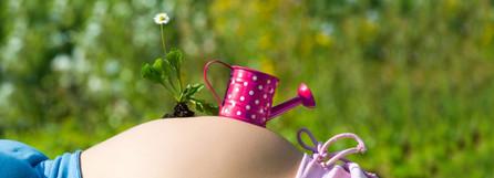 Atelier bienfaits des plantes pendant la grossesse et l'allaitement