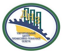 логотип днз.png