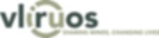 vlir logo.png