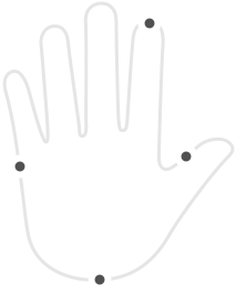 hand-limb%403x_edited.png