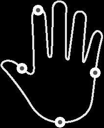 hand-limb@3x.png