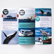 Folded Brochure Back
