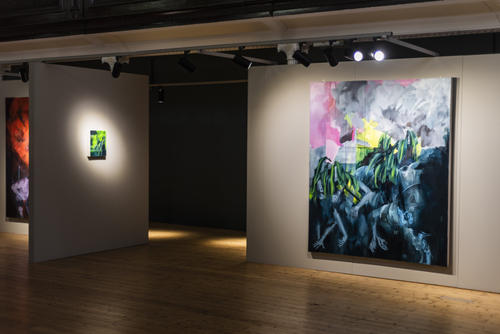 'Bhopal,' Installation photograph, The Glassworks Derry. Photograph by John Deery