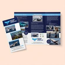 Brochure - 6 page, roll fold