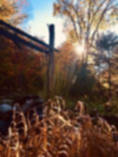 Belle Verte 19.jpg