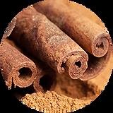 'cinnamon.png