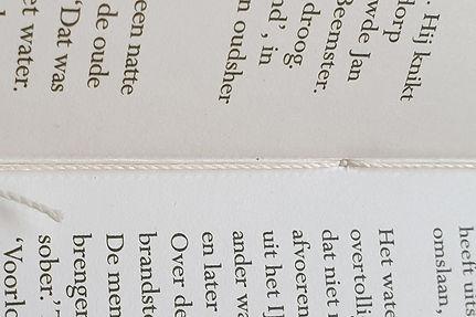 te-droog-of-te-nat-IenW-boekbinden.jpg