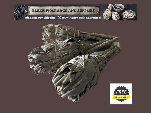 White Sage Torch Bundle