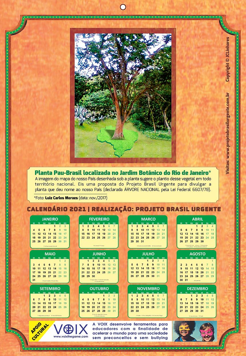 calendario-site.png