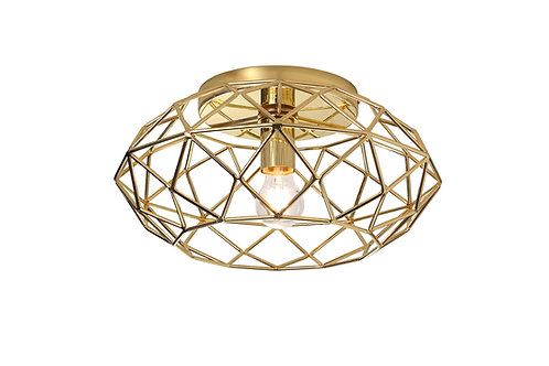 CAGE 1lt Flush Ceiling Light
