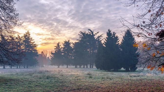 La nebbia agli irti colli…