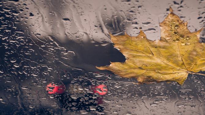 Pioggia di Novembre