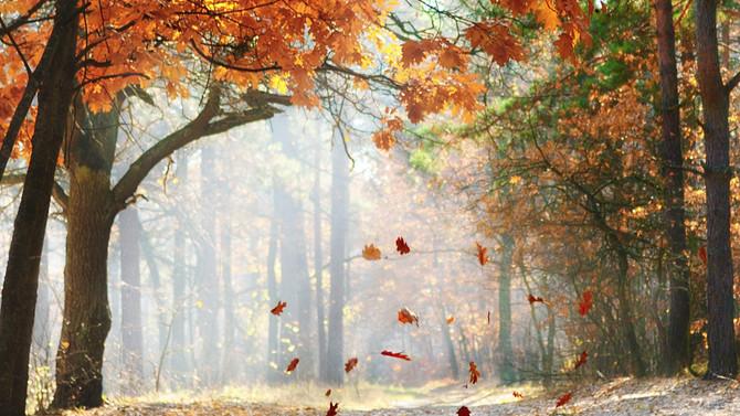 Anticiclone d'autunno
