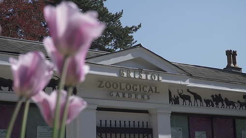 Bristol Zoo.png