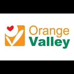 Orange Valley.jpg.png