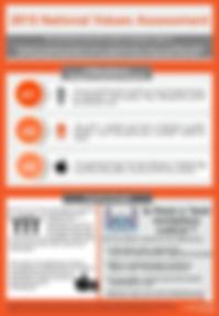 2015 aAdvantage NVA Infographic.JPEG