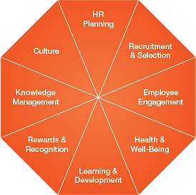 Design Core HR Systems & Processes.png