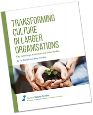 Image for Transforming Culture in Larger