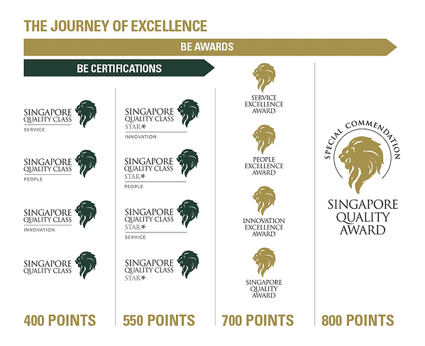 The Journey of Excellence.png