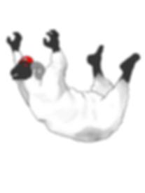 chris_sheep_2.png
