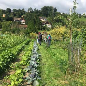 Regenerative Landwirtschaft – Summer School in der Schweiz