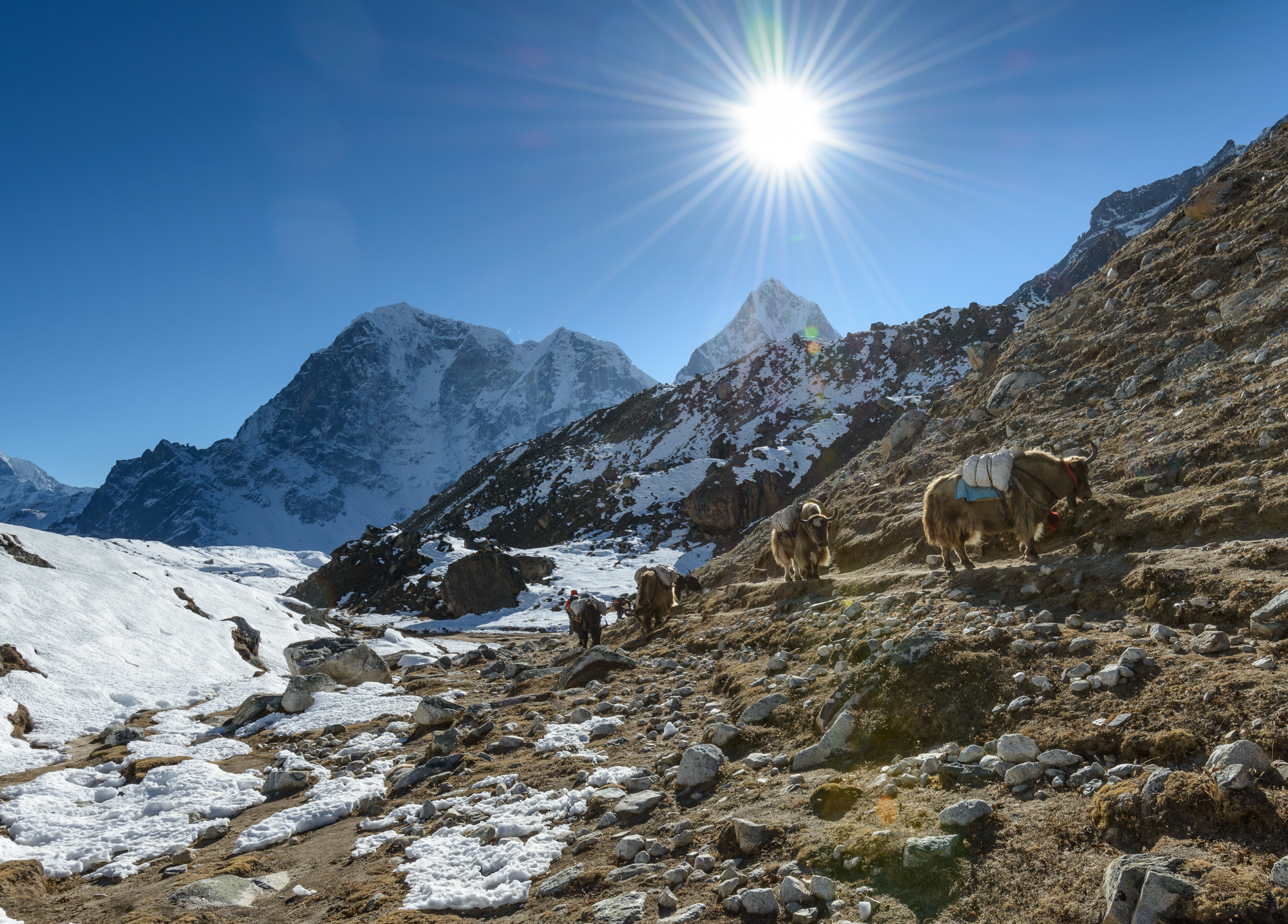 Going_back_from_Everest_Base_Camp_(15094746501)