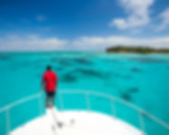 Lighthouse reef (1).jpg
