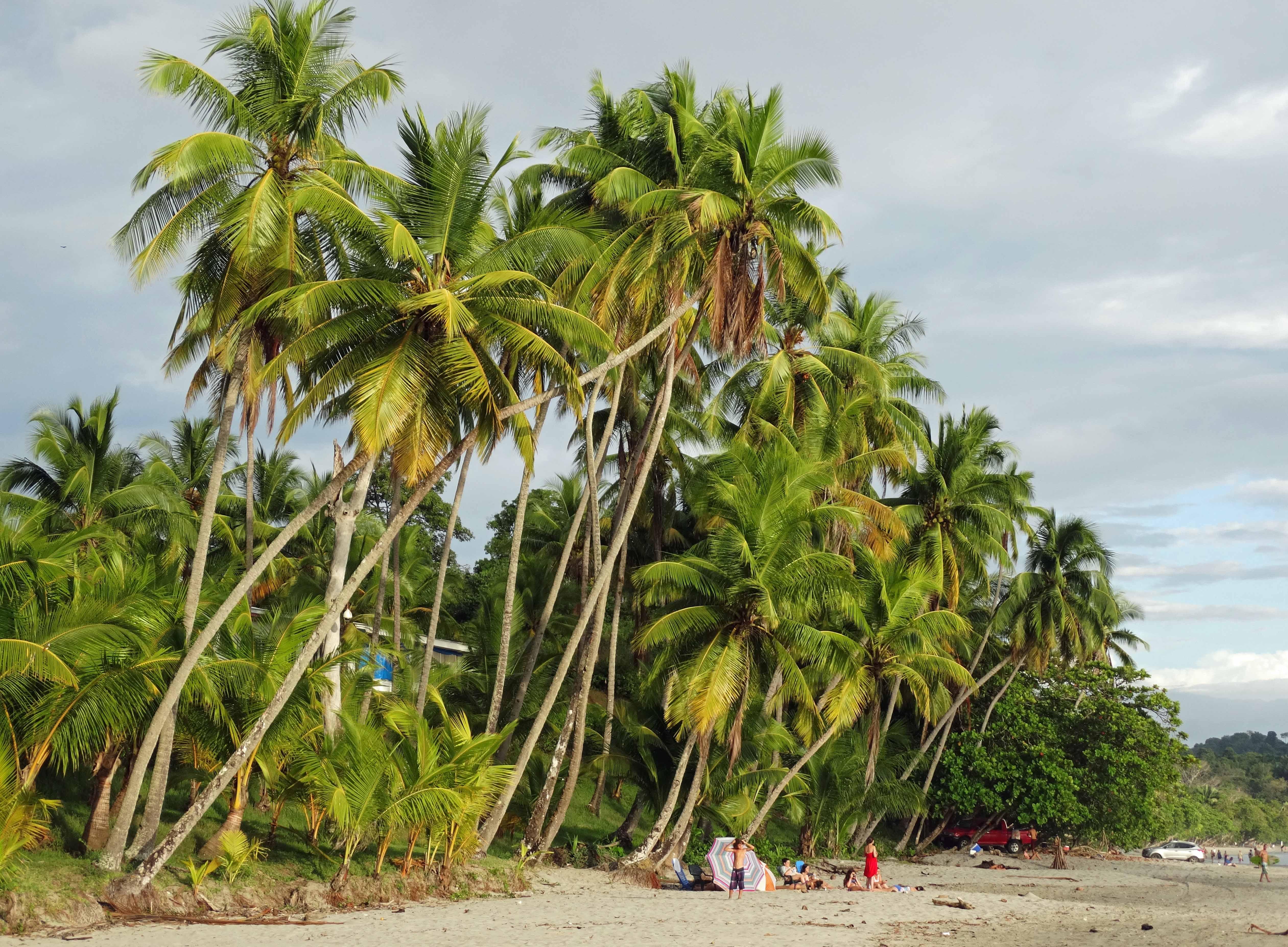 playa-espadilla-manuel-antonio