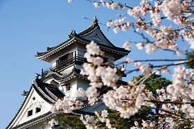 Cherry blossom in Japan Kochi Castle