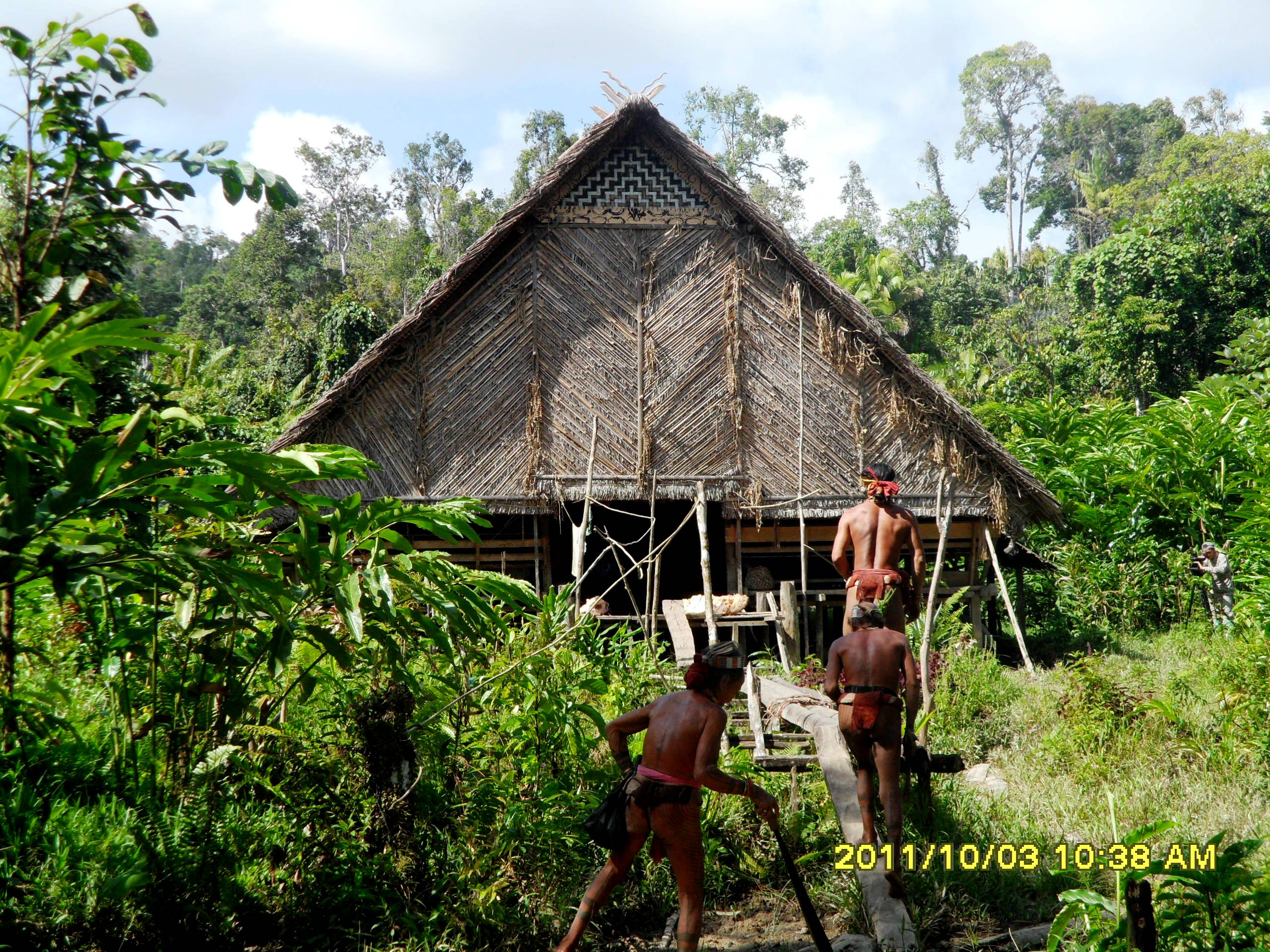Mentawai Tribe  Ready Back Home