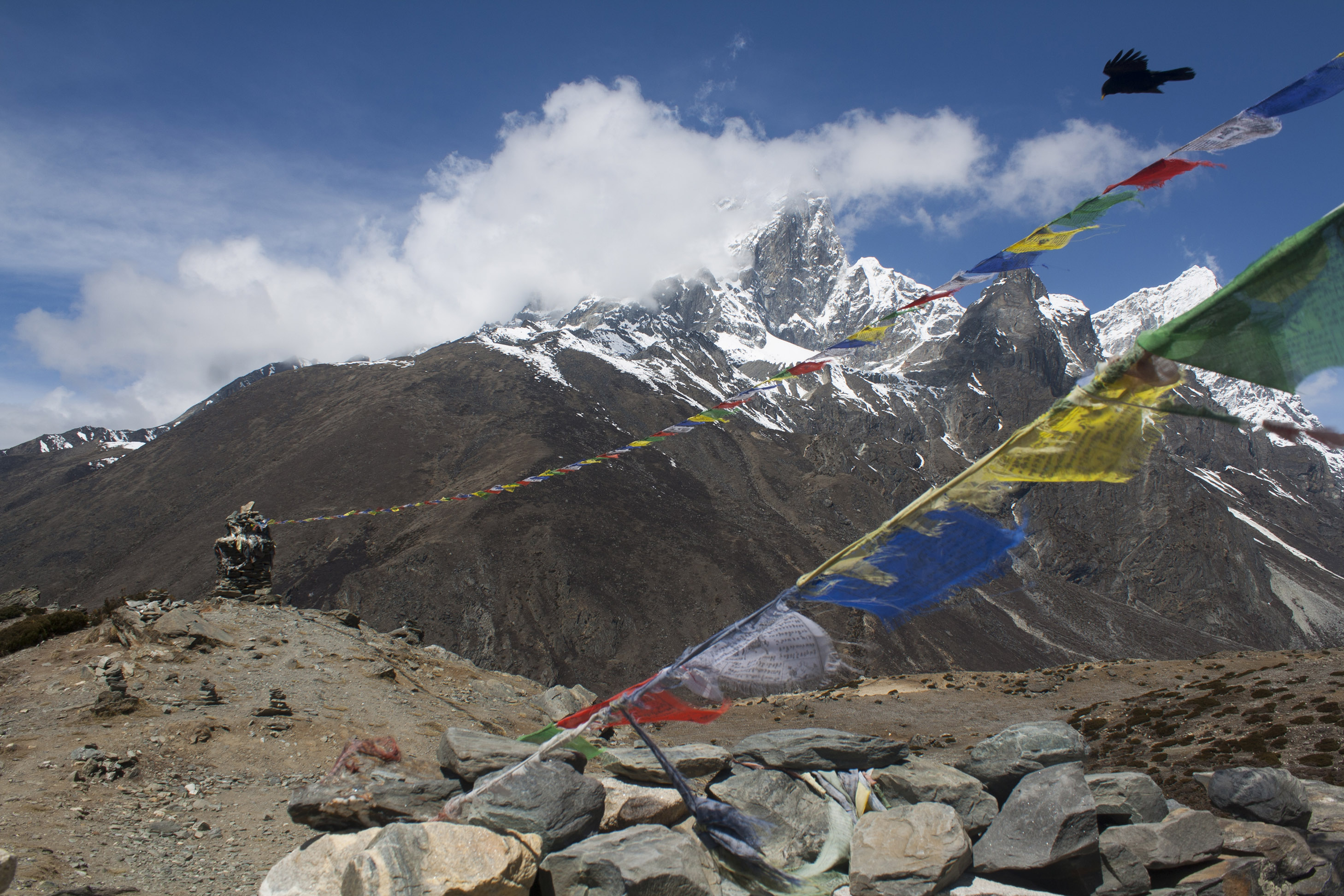 Bird_and_Prayer_Flags_in_Front_of_Mt_Ama_Dablam,_Sagarmatha_National_Park,_Nepal