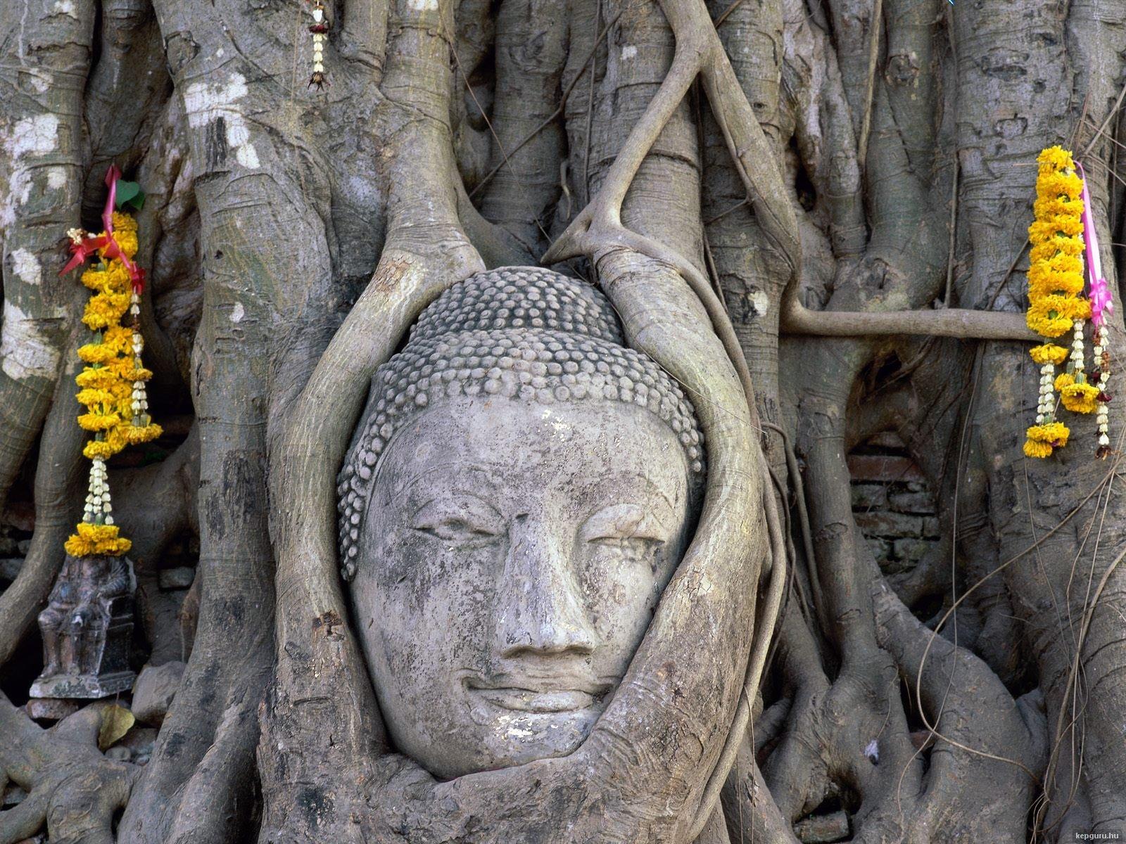 buddha-fej-wat-mahathat-ayutthaya-thaifold